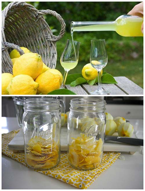 Delicious Limoncello Recipe Mental Scoop